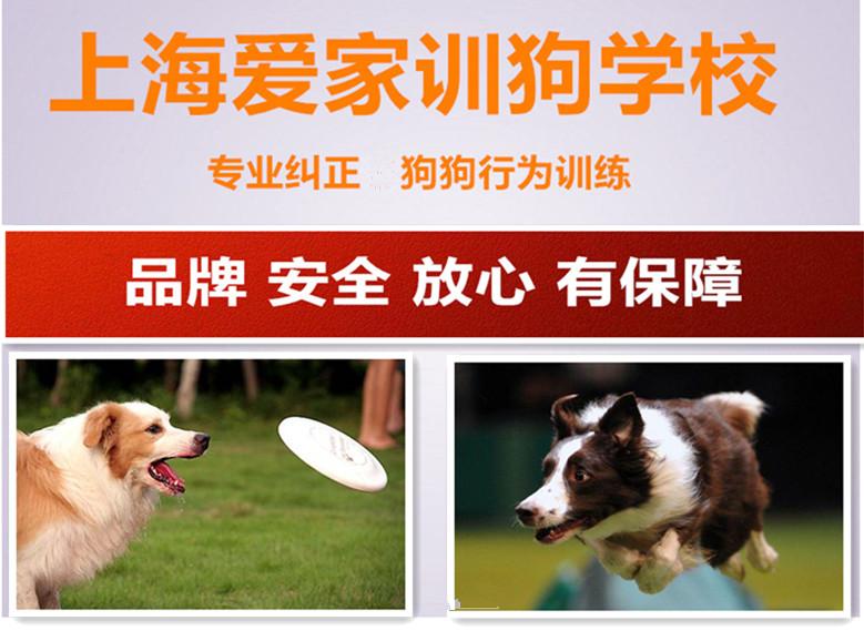 上海爱家品牌保证.jpg